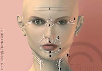 Anti-Aging der Haut, Hautpflege gegen Hautfalten im Gesicht