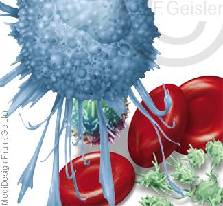 Blutzellen im Blut mit Immunzelle Makrophage, Erythrozyten, Leukozyt und Thrombozyten
