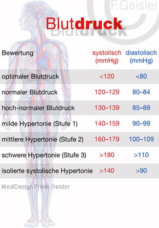Blutdruck im Kreislauf Blutkreislauf Körperkreislauf des Menschen