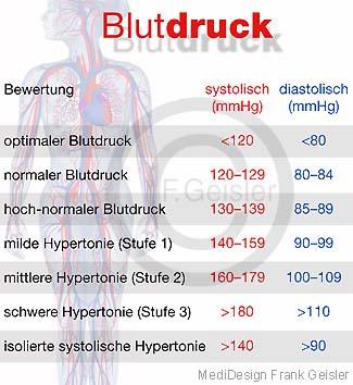 Das Herz-Kreislaufsystem, Blutkreislauf, Kreislaufsystem