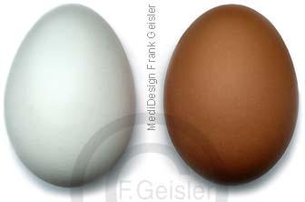 Nahrungsmittel Ei Eier Hühnerei Hühnereier