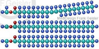 Molekularstruktur Fett Fettsäuren Triglyceride
