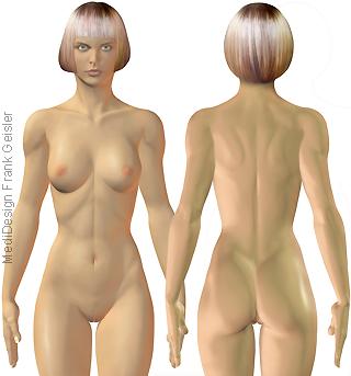 Frau Oberflächenanatomie Haut, Körper Frauenkörper von vorn und hinten