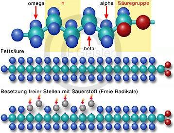 Freie Radikale, Sauerstoff Moleküle Sauerstoffmoleküle und Fett Fettsäure