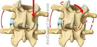 Bewegung Wirbel Wirbelsäule, Lendenwirbel Neigung und Drehung