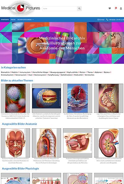 Medical Pictures Bilder Anatomie Medizin von MediDesign Frank Geisler