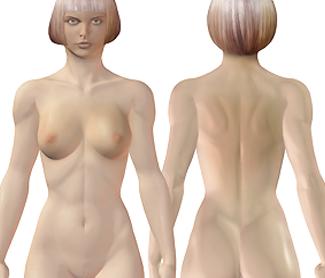 Oberflächenanatomie Körper der Frau, Frauenkörper mit Brust Brustdrüse und Rücken